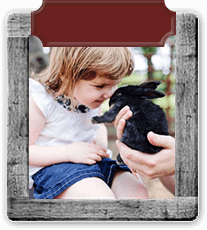 Wooden frame around a photo of a little girl with a black bunny.