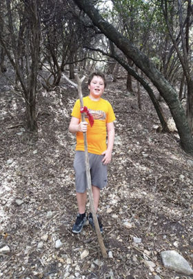 A teenage boy stands in the woods surrounded by trees holding a walking stick.