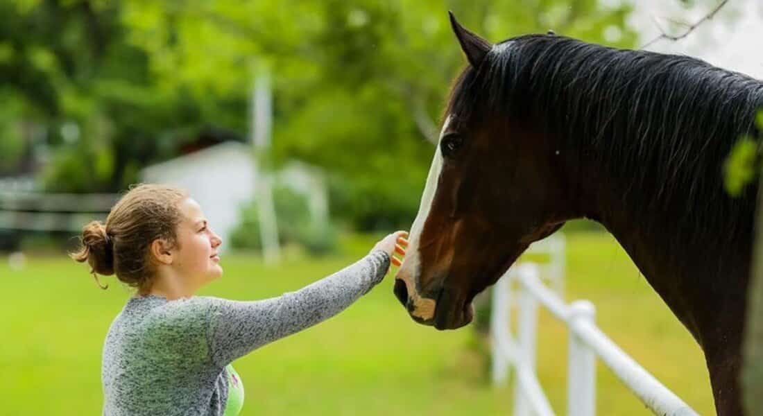 A young blonde woman pets a chestnut horse on the nose.